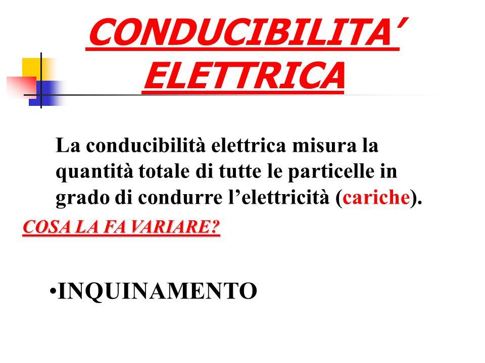 CONDUCIBILITA ELETTRICA La conducibilità elettrica misura la quantità totale di tutte le particelle in grado di condurre lelettricità (cariche).
