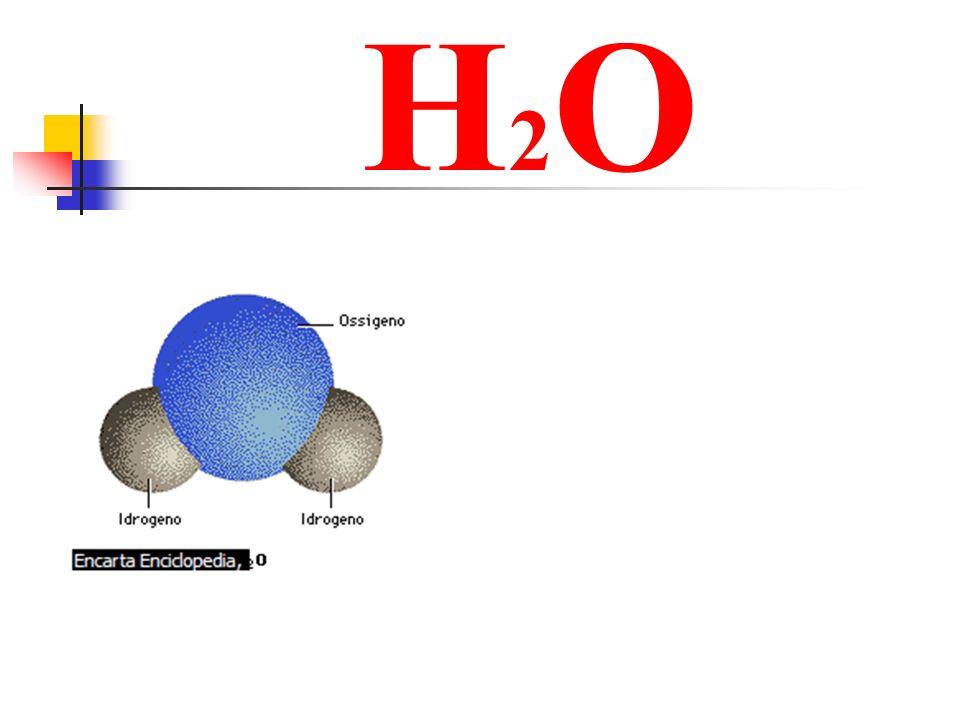 PERCHE ? Temperatura Ossigeno disciolto Determina COSA LA FA VARIARE? INQUINAMENTO INDUSTRIE