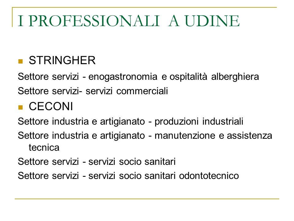 I PROFESSIONALI A UDINE STRINGHER Settore servizi - enogastronomia e ospitalità alberghiera Settore servizi- servizi commerciali CECONI Settore indust