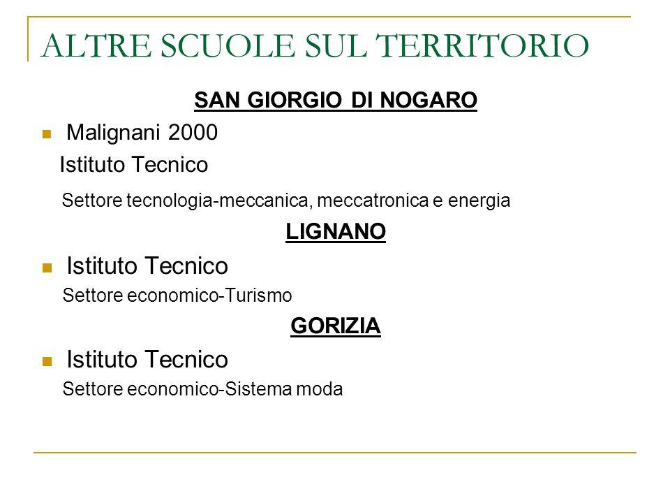 ALTRE SCUOLE SUL TERRITORIO SAN GIORGIO DI NOGARO Malignani 2000 Istituto Tecnico Settore tecnologia-meccanica, meccatronica e energia LIGNANO Istitut
