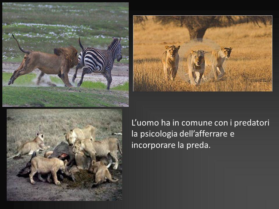 Luomo ha in comune con i predatori la psicologia dellafferrare e incorporare la preda.