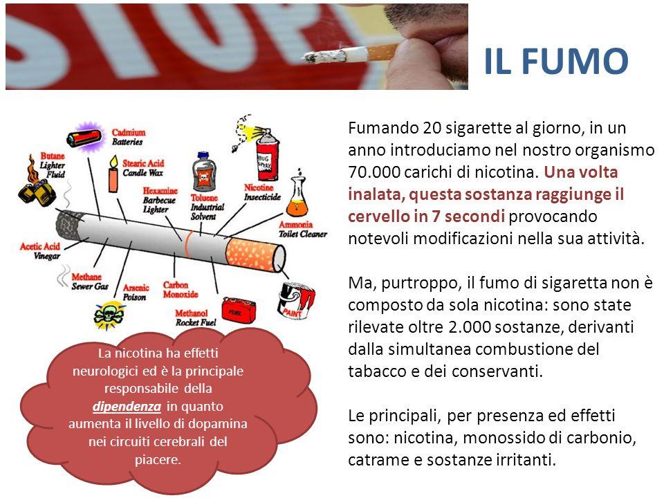 IL FUMO Fumando 20 sigarette al giorno, in un anno introduciamo nel nostro organismo 70.000 carichi di nicotina. Una volta inalata, questa sostanza ra