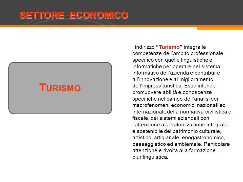 SETTORE ECONOMICO Costruzioni, ambiente e territorio T URISMO lindirizzo Turismo integra le competenze dellambito professionale specifico con quelle l