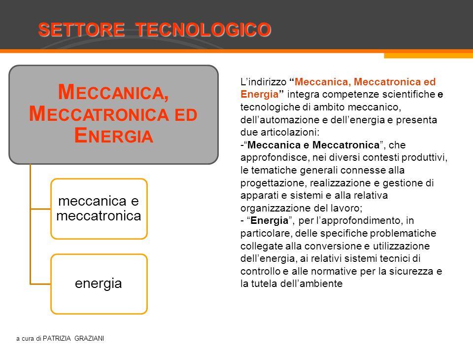 a cura di PATRIZIA GRAZIANI SETTORE TECNOLOGICO Costruzioni, ambiente e territorio M ECCANICA, M ECCATRONICA ED E NERGIA meccanica e meccatronica ener