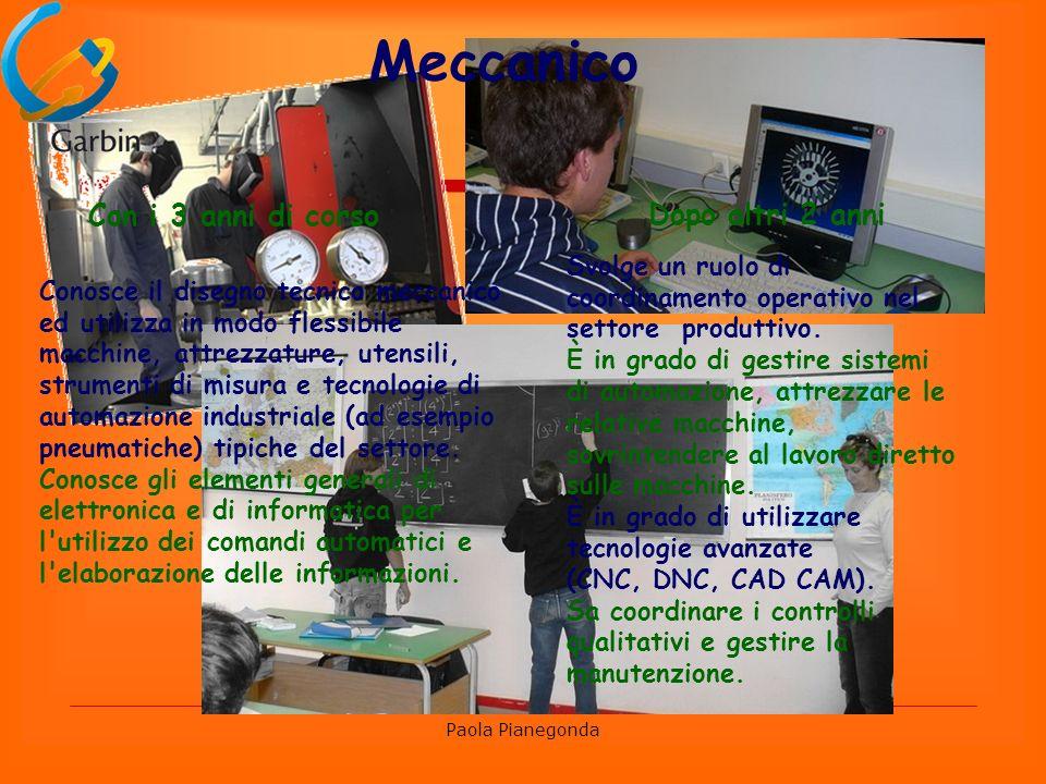 Paola Pianegonda Elettrico-Elettronico Con i 3 anni di corso Realizza, collauda, ripara un impianto elettrico di uso civile.