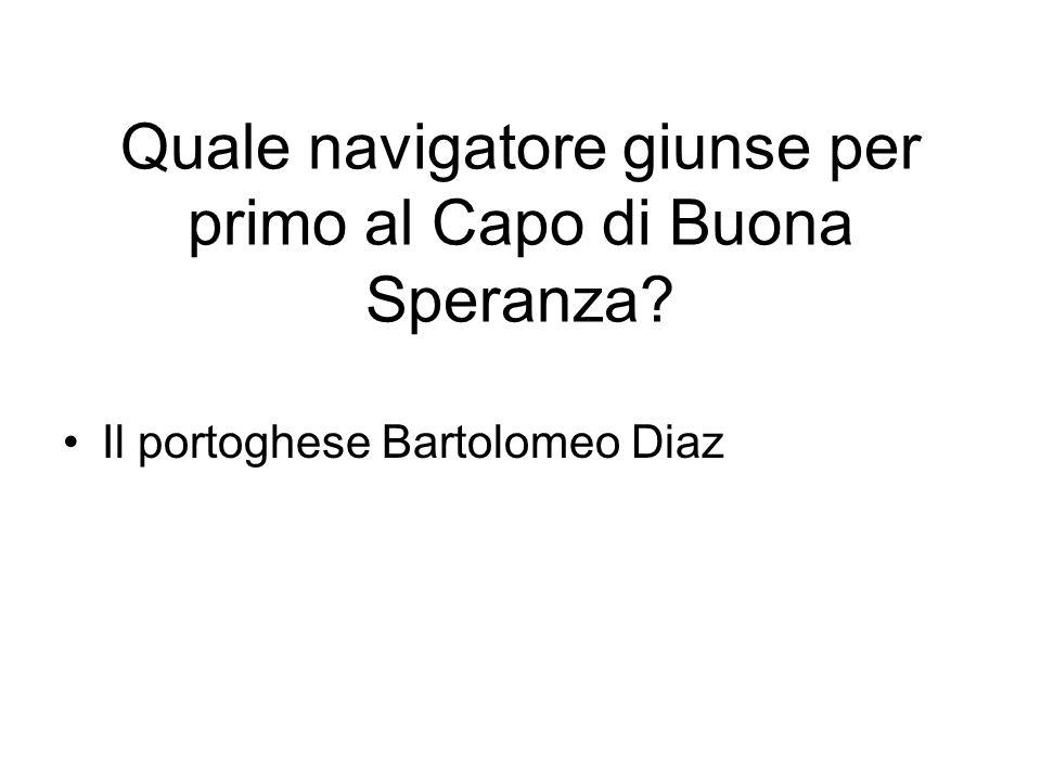 Il portoghese Bartolomeo Diaz Quale navigatore giunse per primo al Capo di Buona Speranza?