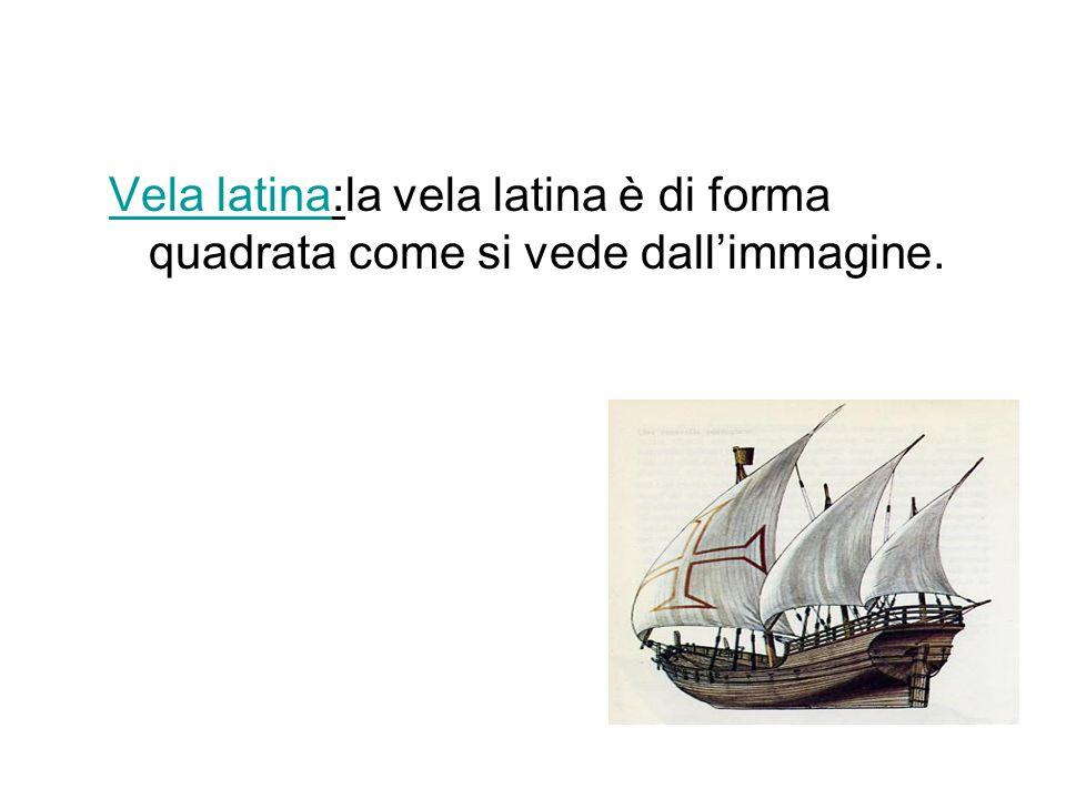 Vela latina:la vela latina è di forma quadrata come si vede dallimmagine.ela latina