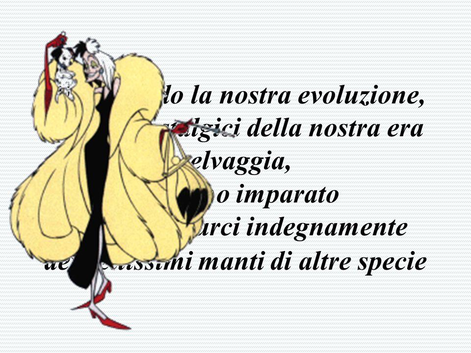 www.divietodaccesso.org Qualsiasi oggetto, indumento, rifinitura in pelliccia alimenta e sostiene questo mercato di morte.