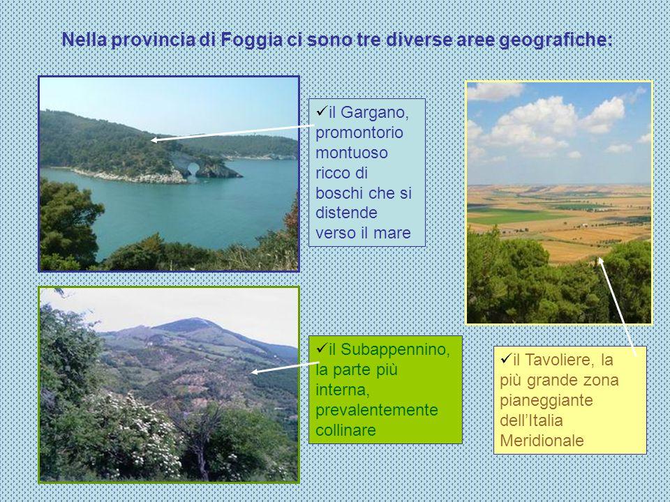 Nella provincia di Foggia ci sono tre diverse aree geografiche: il Tavoliere, la più grande zona pianeggiante dellItalia Meridionale il Gargano, promo