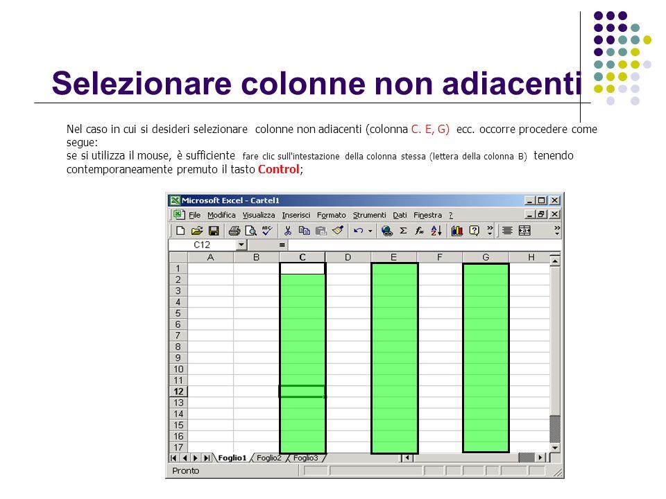 Selezionare colonne non adiacenti Nel caso in cui si desideri selezionare colonne non adiacenti (colonna C. E, G) ecc. occorre procedere come segue: s