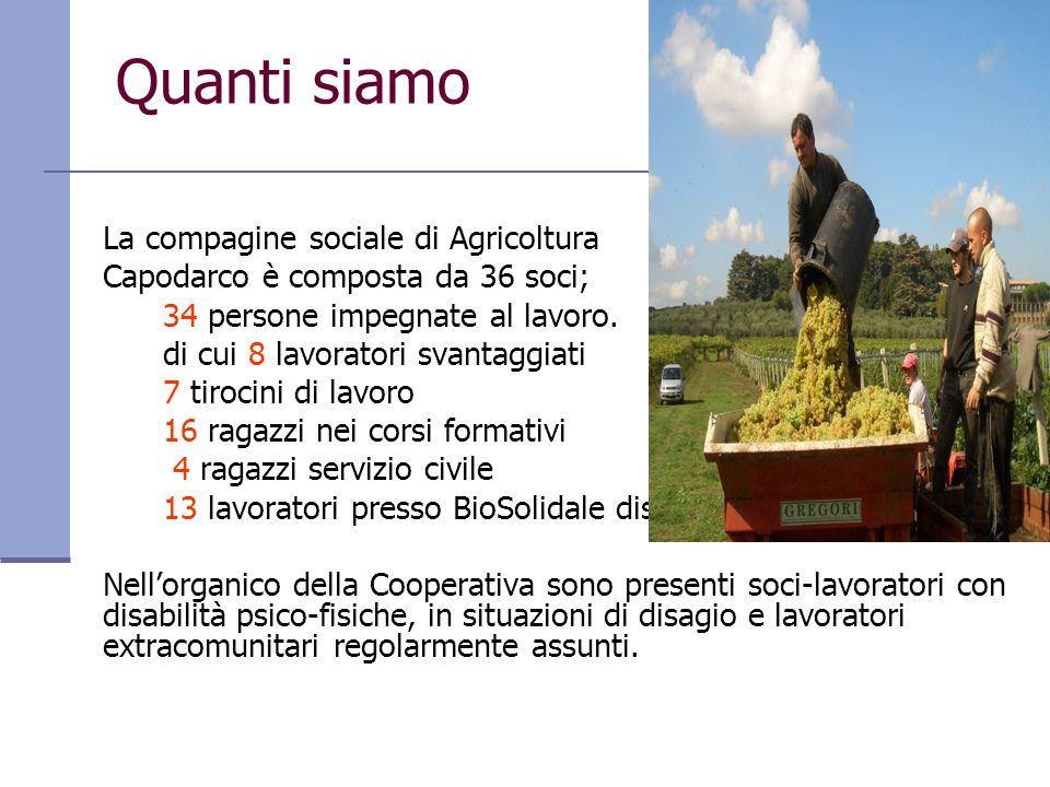 Quanti siamo La compagine sociale di Agricoltura Capodarco è composta da 36 soci; 34 persone impegnate al lavoro. di cui 8 lavoratori svantaggiati 7 t