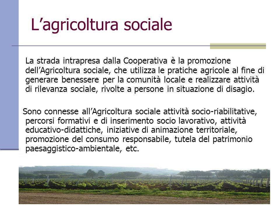Lagricoltura sociale La strada intrapresa dalla Cooperativa è la promozione dellAgricoltura sociale, che utilizza le pratiche agricole al fine di gene
