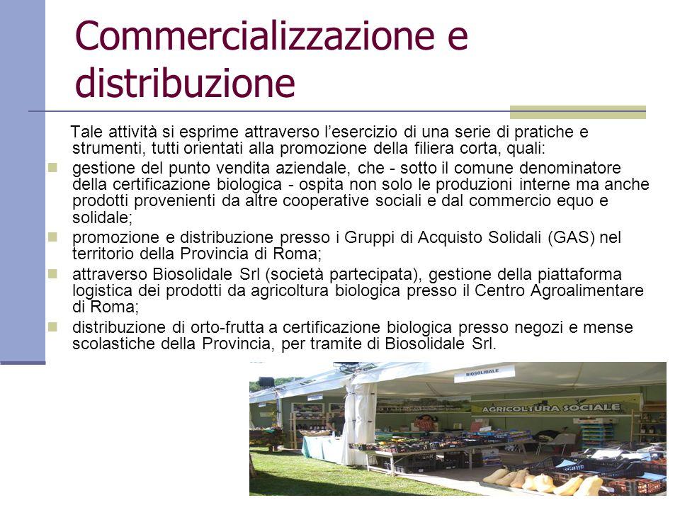 Commercializzazione e distribuzione Tale attività si esprime attraverso lesercizio di una serie di pratiche e strumenti, tutti orientati alla promozio