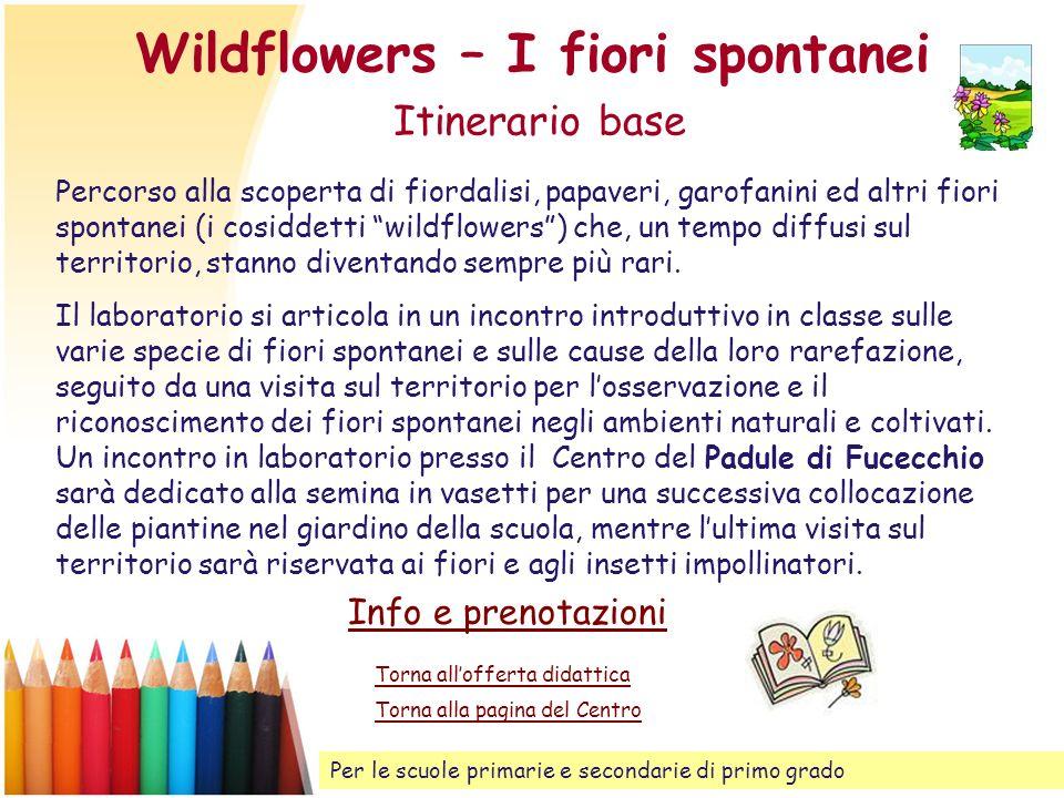Wildflowers – I fiori spontanei Itinerario base Percorso alla scoperta di fiordalisi, papaveri, garofanini ed altri fiori spontanei (i cosiddetti wild