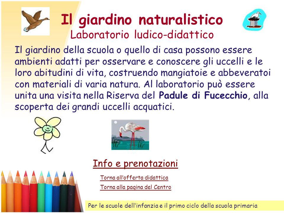 Il giardino naturalistico Laboratorio ludico-didattico Il giardino della scuola o quello di casa possono essere ambienti adatti per osservare e conosc
