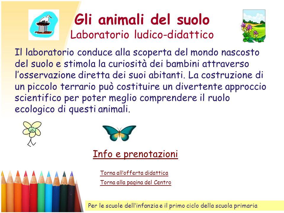 Gli animali del suolo Laboratorio ludico-didattico Il laboratorio conduce alla scoperta del mondo nascosto del suolo e stimola la curiosità dei bambin
