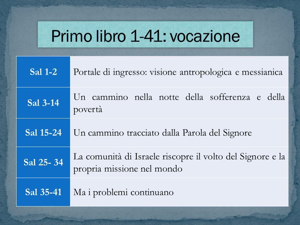 Sal 1-2Portale di ingresso: visione antropologica e messianica Sal 3-14 Un cammino nella notte della sofferenza e della povertà Sal 15-24Un cammino tr