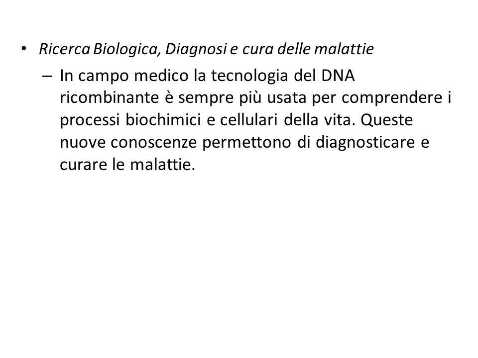 Ricerca Biologica, Diagnosi e cura delle malattie – In campo medico la tecnologia del DNA ricombinante è sempre più usata per comprendere i processi biochimici e cellulari della vita.