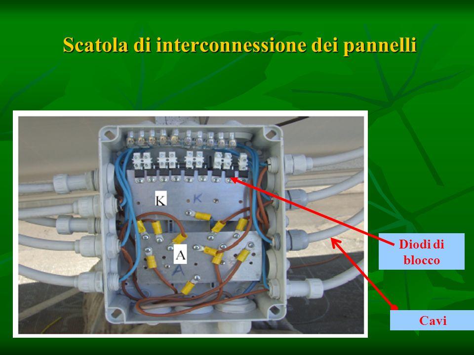 Scatola di interconnessione dei pannelli Scatola di interconnessione dei pannelli Diodi di blocco Cavi