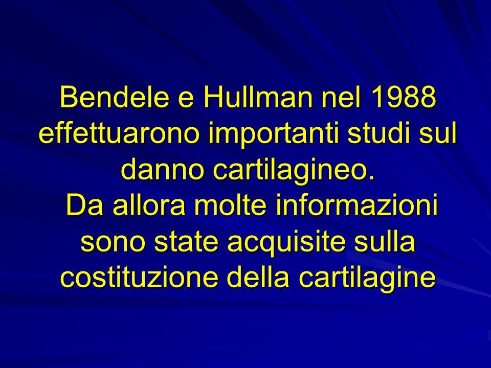 Bendele e Hullman nel 1988 effettuarono importanti studi sul danno cartilagineo. Da allora molte informazioni sono state acquisite sulla costituzione