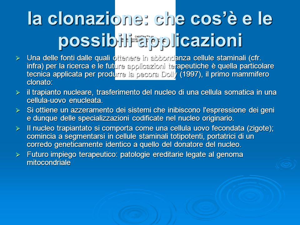 la clonazione: che cosè e le possibili applicazioni Una delle fonti dalle quali ottenere in abbondanza cellule staminali (cfr.