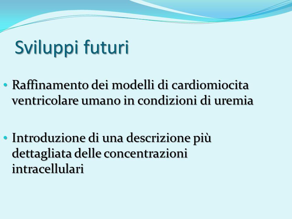Sviluppi futuri Raffinamento dei modelli di cardiomiocita ventricolare umano in condizioni di uremia Raffinamento dei modelli di cardiomiocita ventric