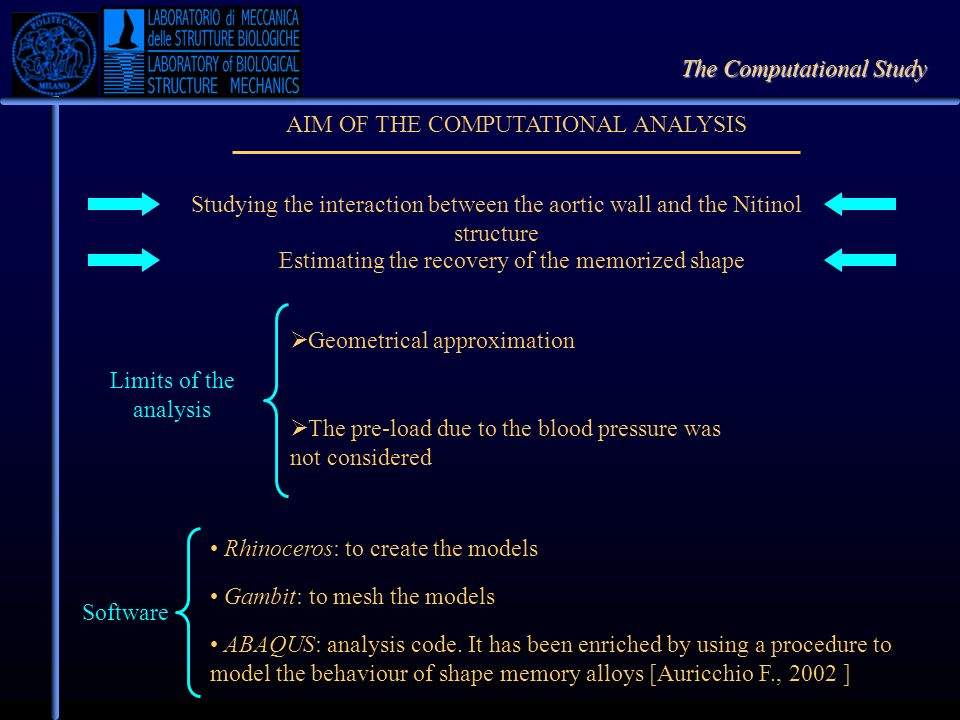 The Computational Study AIM OF THE COMPUTATIONAL ANALYSIS Estimating the recovery of the memorized shape Studying the interaction between the aortic w