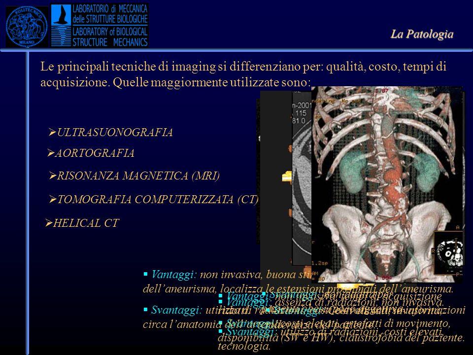 Le principali tecniche di imaging si differenziano per: qualità, costo, tempi di acquisizione.