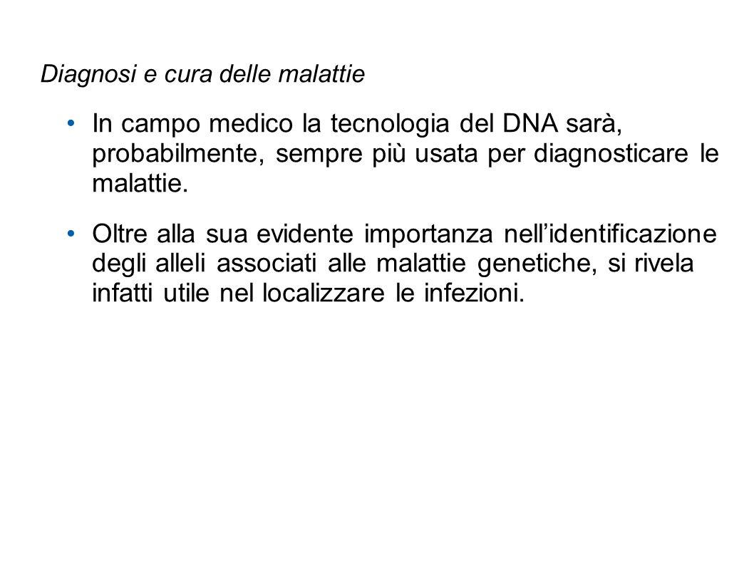 Diagnosi e cura delle malattie In campo medico la tecnologia del DNA sarà, probabilmente, sempre più usata per diagnosticare le malattie. Oltre alla s