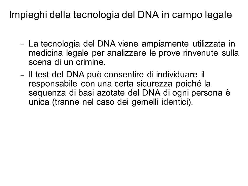 Impieghi della tecnologia del DNA in campo legale La tecnologia del DNA viene ampiamente utilizzata in medicina legale per analizzare le prove rinvenu