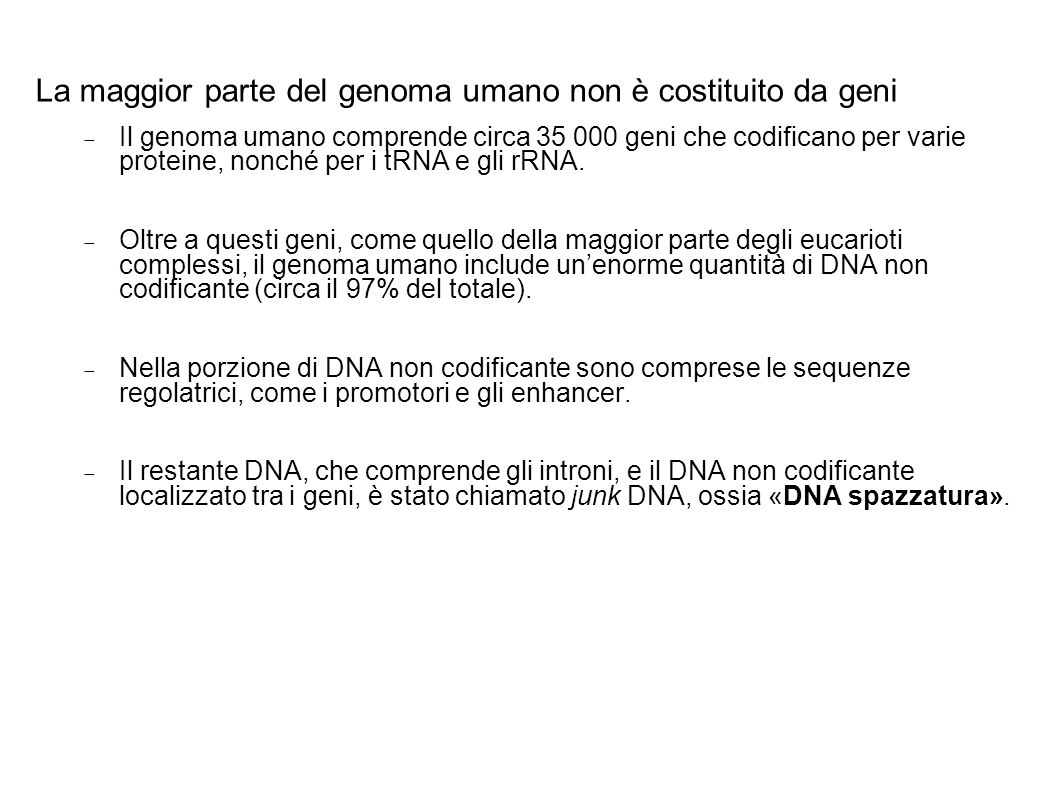 La maggior parte del genoma umano non è costituito da geni Il genoma umano comprende circa 35 000 geni che codificano per varie proteine, nonché per i tRNA e gli rRNA.