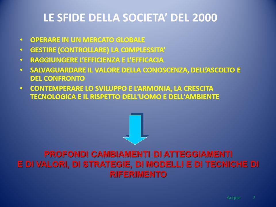 LE SFIDE DELLA SOCIETA DEL 2000 OPERARE IN UN MERCATO GLOBALE GESTIRE (CONTROLLARE) LA C0MPLESSITA RAGGIUNGERE LEFFICIENZA E LEFFICACIA SALVAGUARDARE