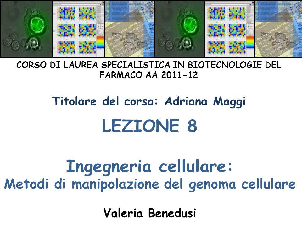 LEZIONE 8 Ingegneria cellulare: Metodi di manipolazione del genoma cellulare Valeria Benedusi CORSO DI LAUREA SPECIALISTICA IN BIOTECNOLOGIE DEL FARMA