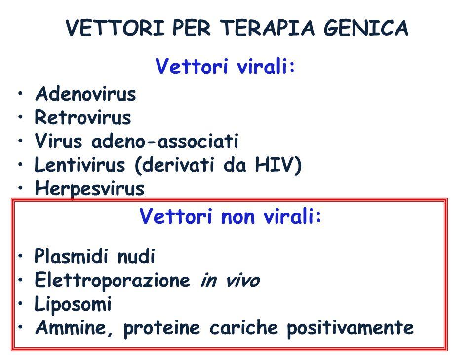 Adenovirus Retrovirus Virus adeno-associati Lentivirus (derivati da HIV) Herpesvirus Plasmidi nudi Elettroporazione in vivo Liposomi Ammine, proteine
