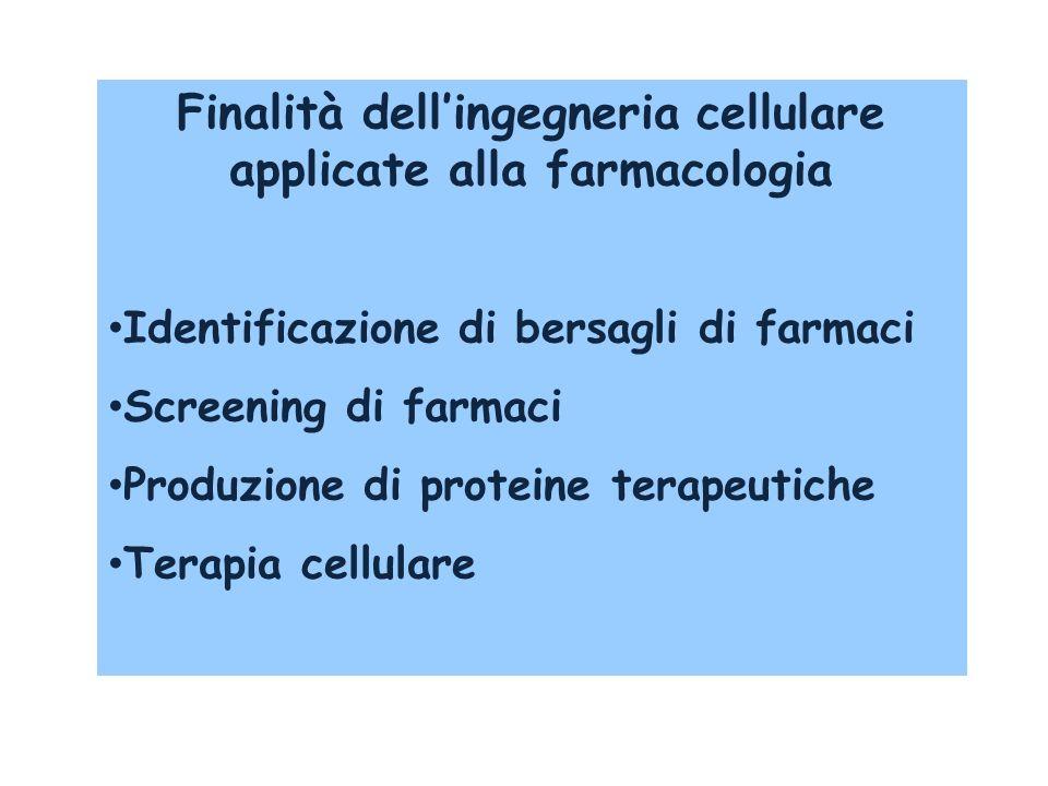 Finalità dellingegneria cellulare applicate alla farmacologia Identificazione di bersagli di farmaci Screening di farmaci Produzione di proteine terap