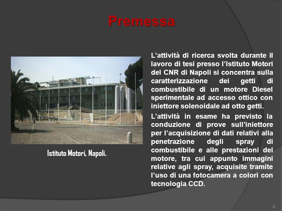 Premessa 2 Lattività di ricerca svolta durante il lavoro di tesi presso lIstituto Motori del CNR di Napoli si concentra sulla caratterizzazione dei ge