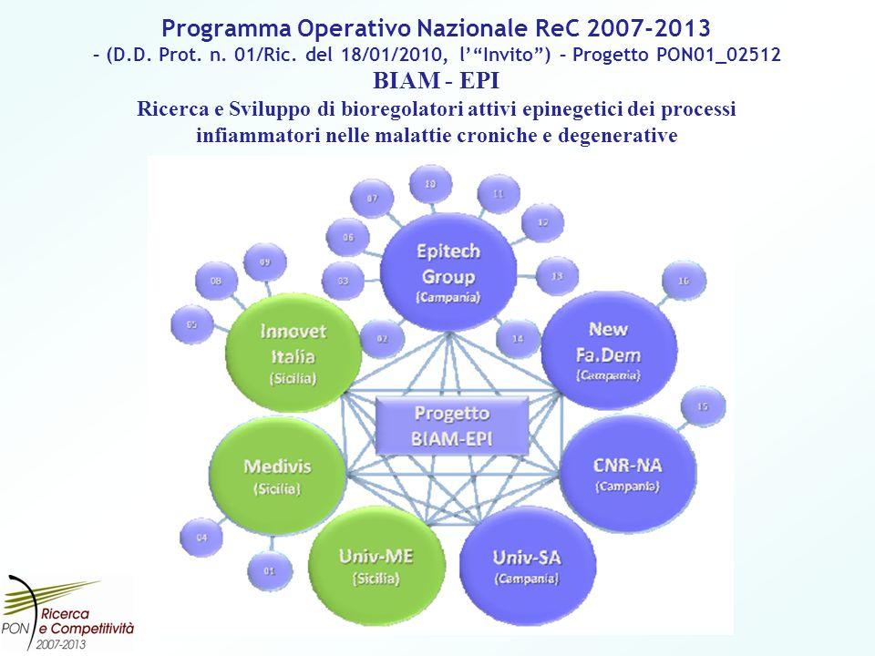 Programma Operativo Nazionale ReC 2007-2013 – (D.D. Prot. n. 01/Ric. del 18/01/2010, lInvito) – Progetto PON01_02512 BIAM - EPI Ricerca e Sviluppo di