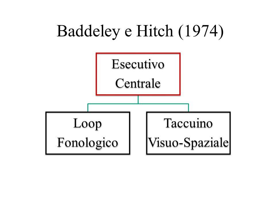 Baddeley e Hitch (1974) Esecutivo Centrale Loop Fonologico Taccuino Visuo-Spaziale