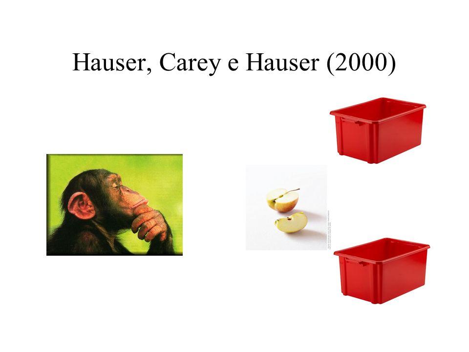 Hauser, Carey e Hauser (2000)