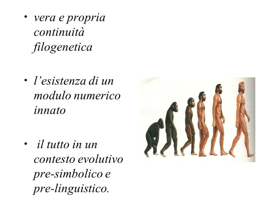 vera e propria continuità filogenetica lesistenza di un modulo numerico innato il tutto in un contesto evolutivo pre-simbolico e pre-linguistico.