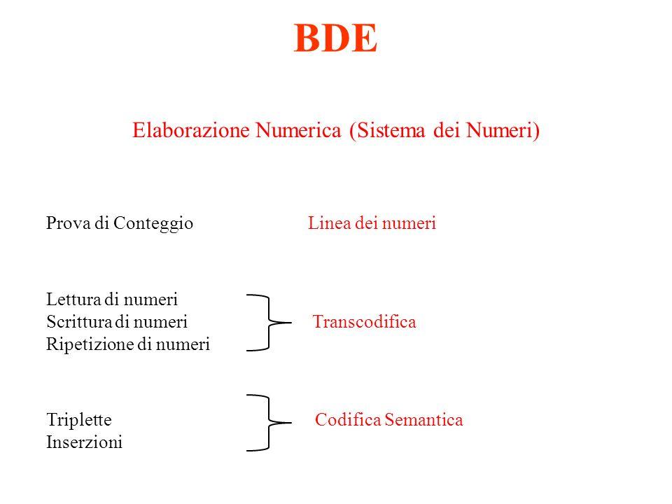 BDE Elaborazione Numerica (Sistema dei Numeri) Prova di Conteggio Linea dei numeri Lettura di numeri Scrittura di numeri Transcodifica Ripetizione di