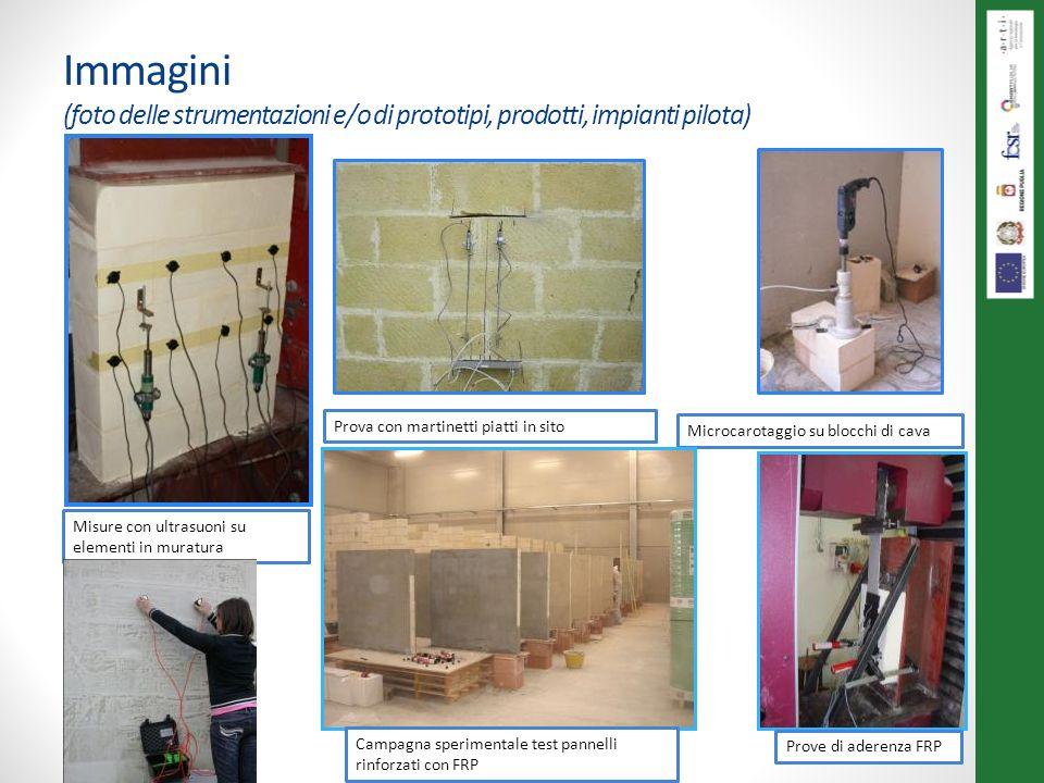 Immagini (foto delle strumentazioni e/o di prototipi, prodotti, impianti pilota) Misure con ultrasuoni su elementi in muratura Prova con martinetti pi