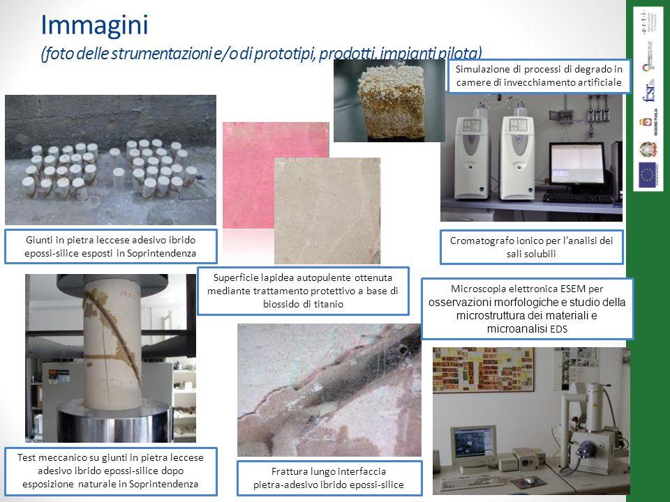 Immagini (foto delle strumentazioni e/o di prototipi, prodotti, impianti pilota) Giunti in pietra leccese adesivo ibrido epossi-silice esposti in Sopr