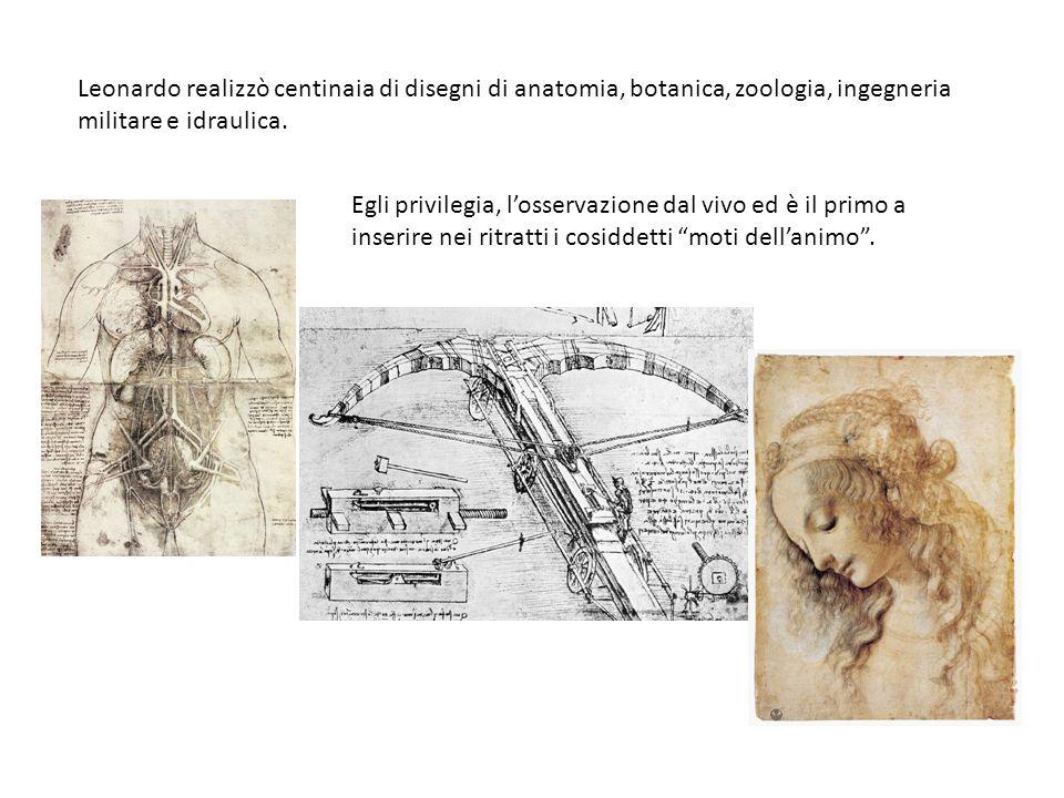 Leonardo realizzò centinaia di disegni di anatomia, botanica, zoologia, ingegneria militare e idraulica. Egli privilegia, losservazione dal vivo ed è