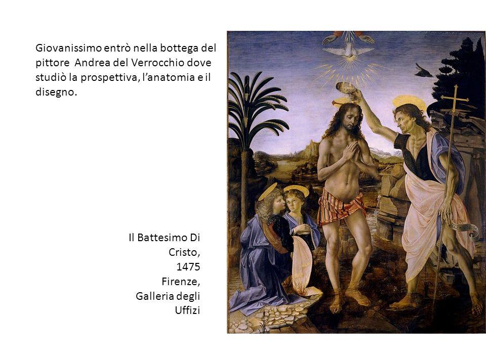 Giovanissimo entrò nella bottega del pittore Andrea del Verrocchio dove studiò la prospettiva, lanatomia e il disegno. Il Battesimo Di Cristo, 1475 Fi
