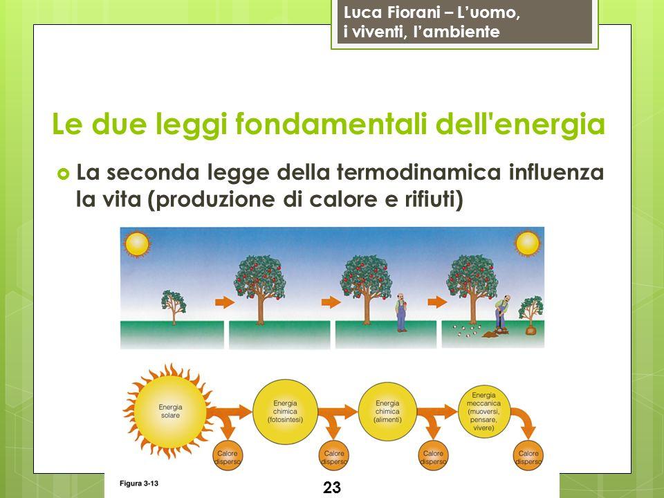 Luca Fiorani – Luomo, i viventi, lambiente Le due leggi fondamentali dell energia La seconda legge della termodinamica influenza la vita (produzione di calore e rifiuti) 23