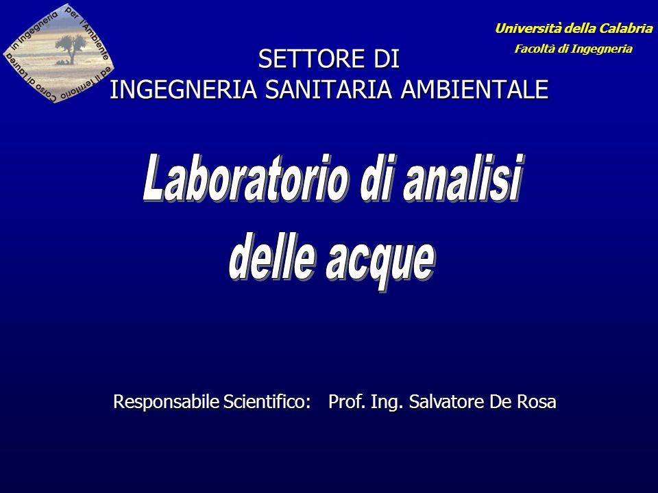 SETTORE DI INGEGNERIA SANITARIA AMBIENTALE Responsabile Scientifico: Prof.