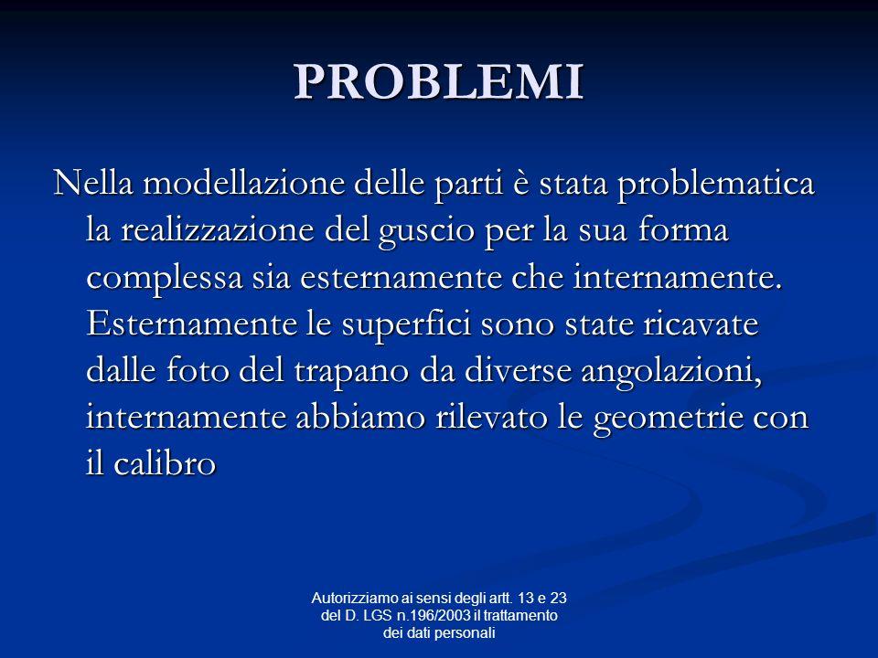 Autorizziamo ai sensi degli artt. 13 e 23 del D. LGS n.196/2003 il trattamento dei dati personali PROBLEMI Nella modellazione delle parti è stata prob