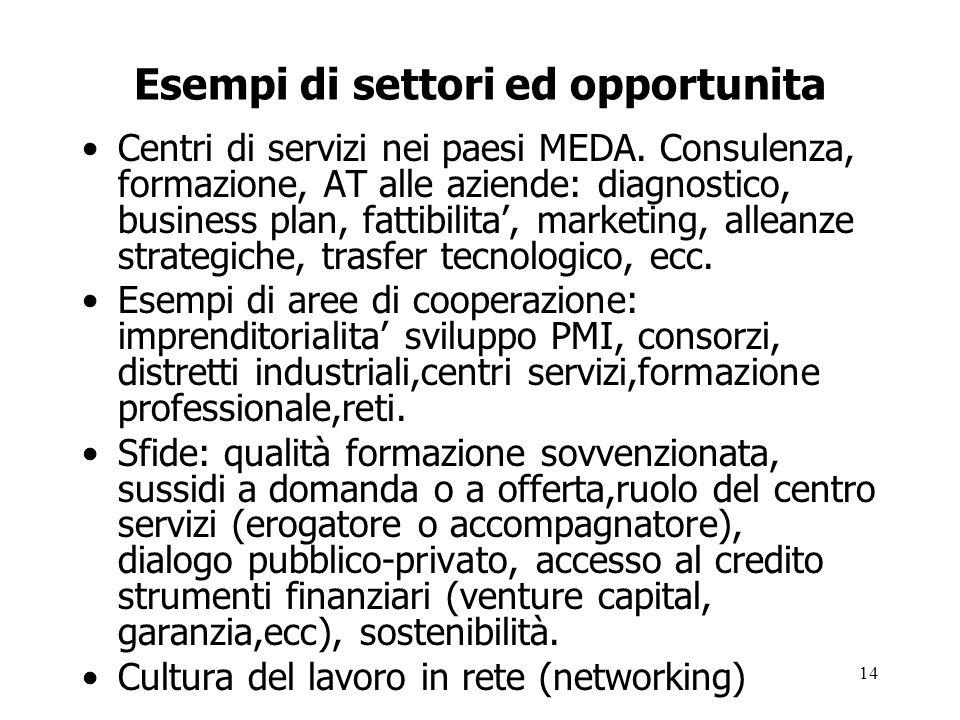 14 Esempi di settori ed opportunita Centri di servizi nei paesi MEDA. Consulenza, formazione, AT alle aziende: diagnostico, business plan, fattibilita