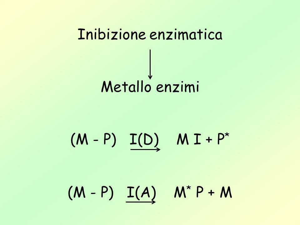Inibizione enzimatica Metallo enzimi (M - P) I(D) M I + P * (M - P) I(A) M * P + M